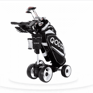 QOD Electric Buggy Features